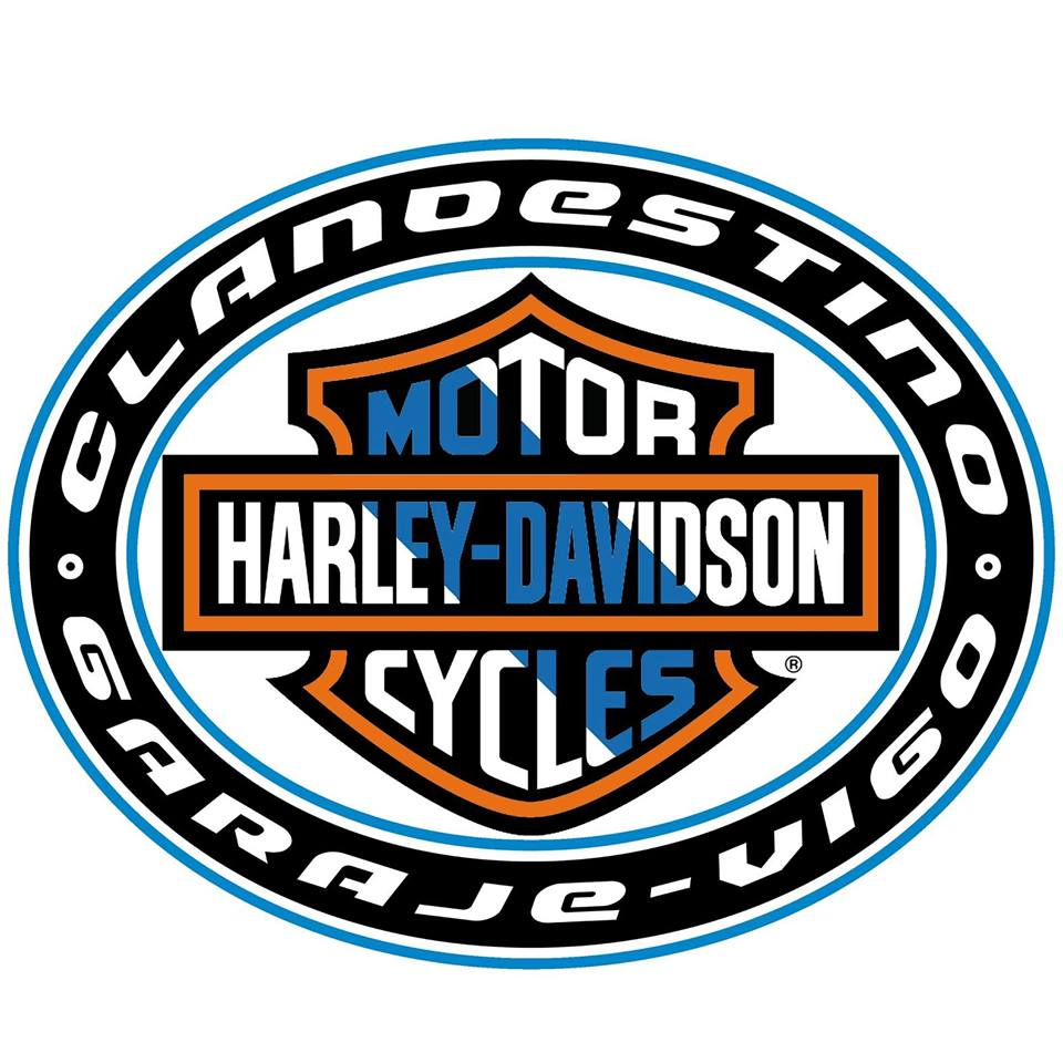 HARLEY DAVIDSON VIGO